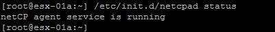 NSX Data - Step 6.jpg