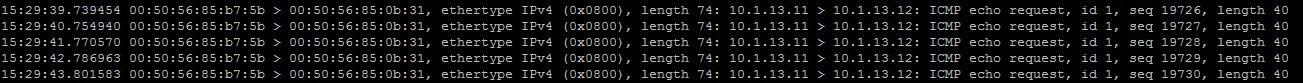 ICMP echo request 1.jpg