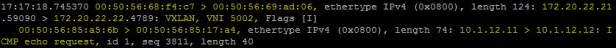ICMP echo request 3.jpg