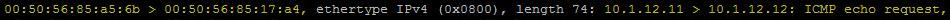 ICMP echo request 3b.jpg