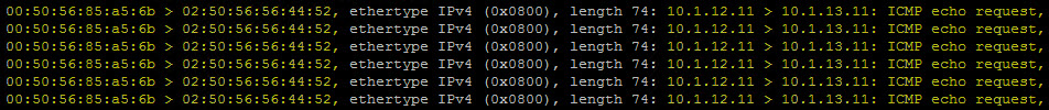 ICMP echo request 4a.jpg