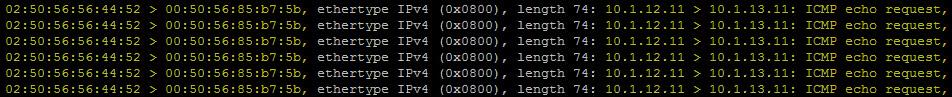 ICMP echo request 4e.jpg