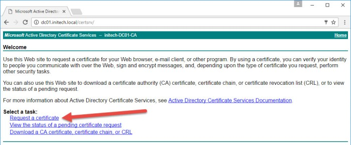 step-9-ms-certificate-request