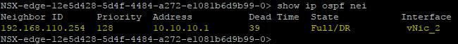 XX - OSPF adjacency ULDR